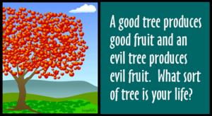 Pohon Kehidupan dan buahnya