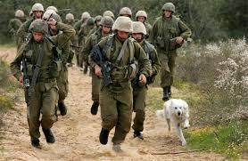 Tentara Israel sedang beroperasi