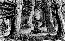 Finney bertobat di hutan